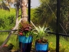 Poolside Plantings