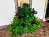 Tropical Wedding Plants