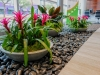Colorful Plant Bowls