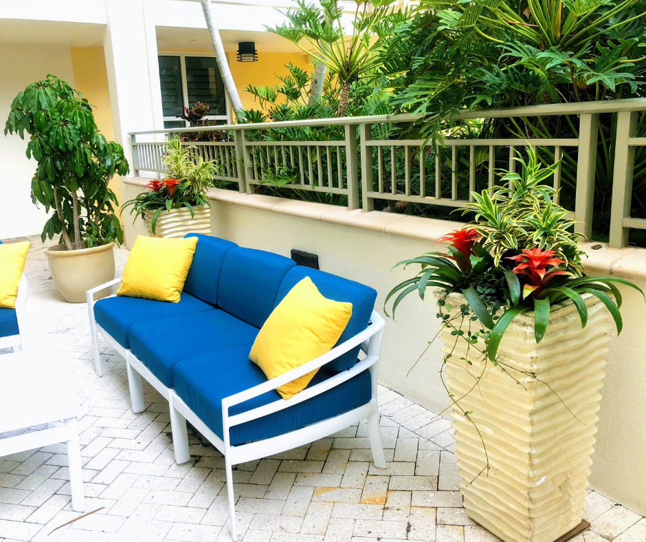 Colorful tropical plantings on pool deck at Sarasota condo