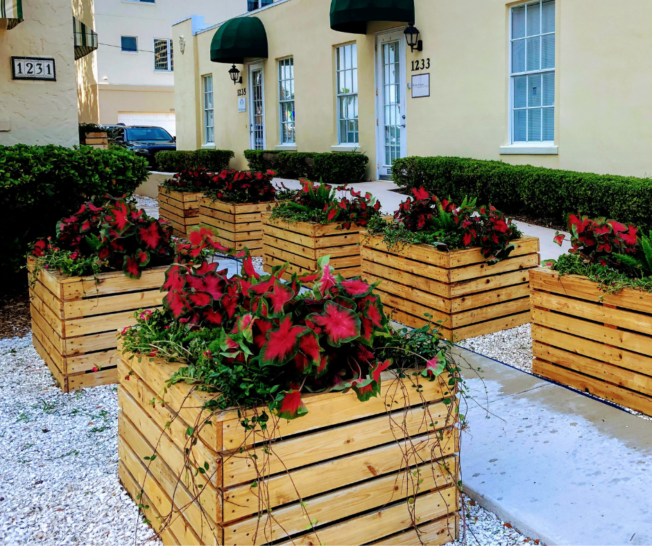 entryway planters with colorful annuals