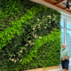 GSky Green wall in country club