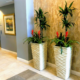 Interior plants in downtown Sarasota condominium