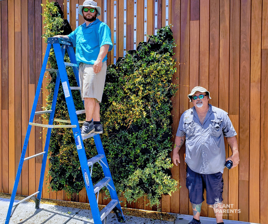 GrowUp Green Wall with jasmine and plant parents crew