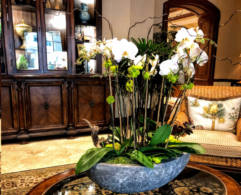 Orchid centerpiece with regular plant service