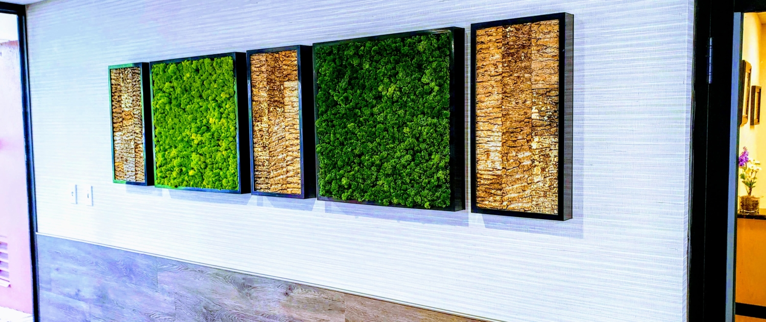 Moss Art Installation Office Center Sarasota