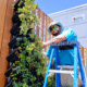 GrowUp Green Wall with jasmine and plant parents horticultural tech