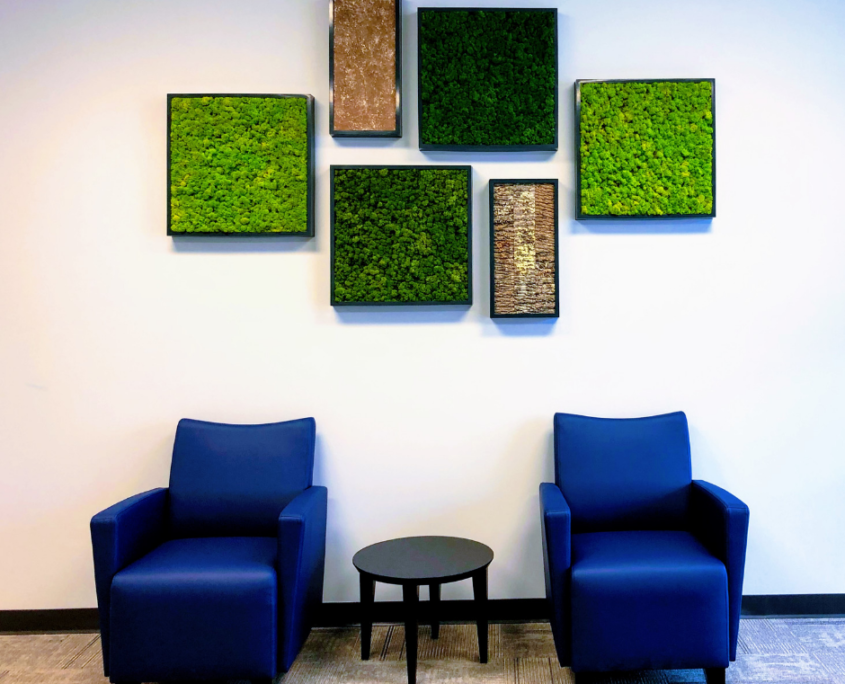 Green wall panels acoustic moss
