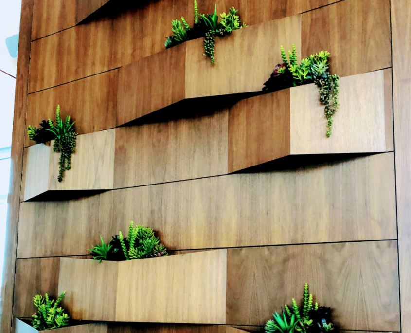 succulent wall green wall