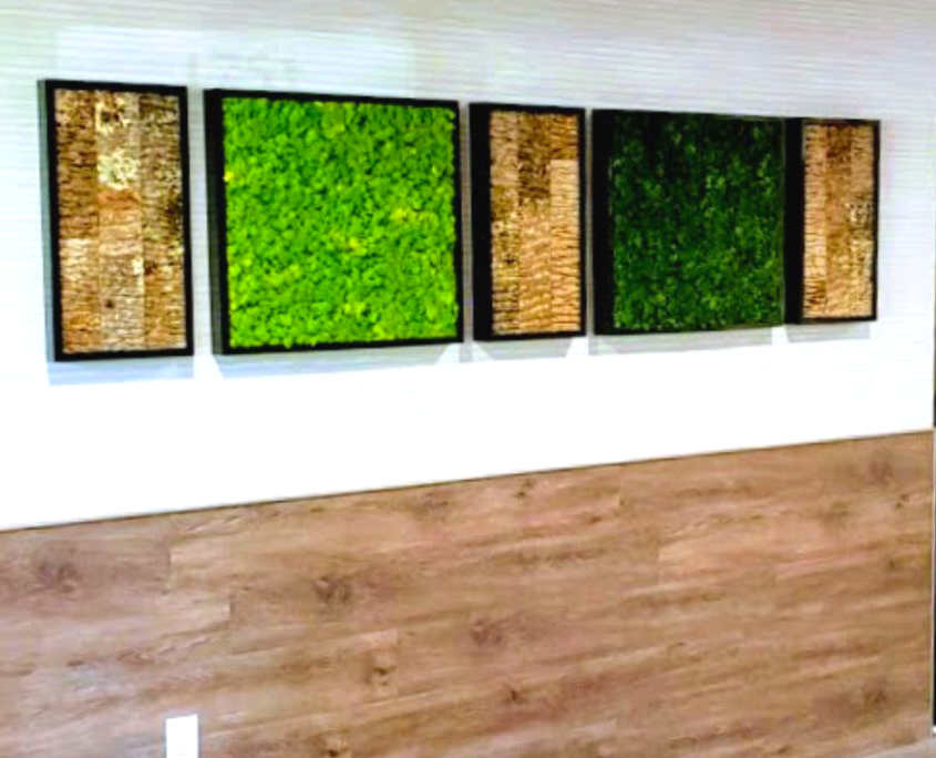 Green wall moss panels