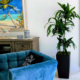 Lisa cane in tall square planter in home