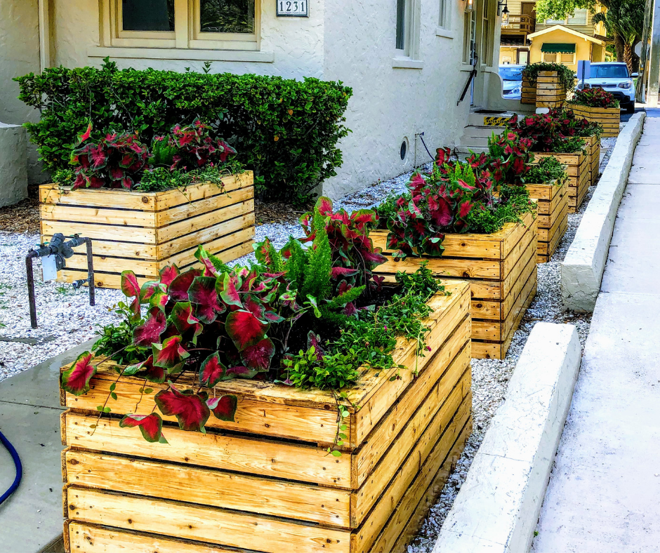 Outdoor container plantings with flowers