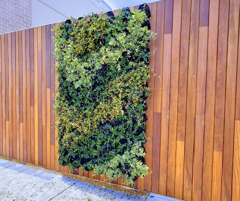GrowUp Green Wall with jasmine