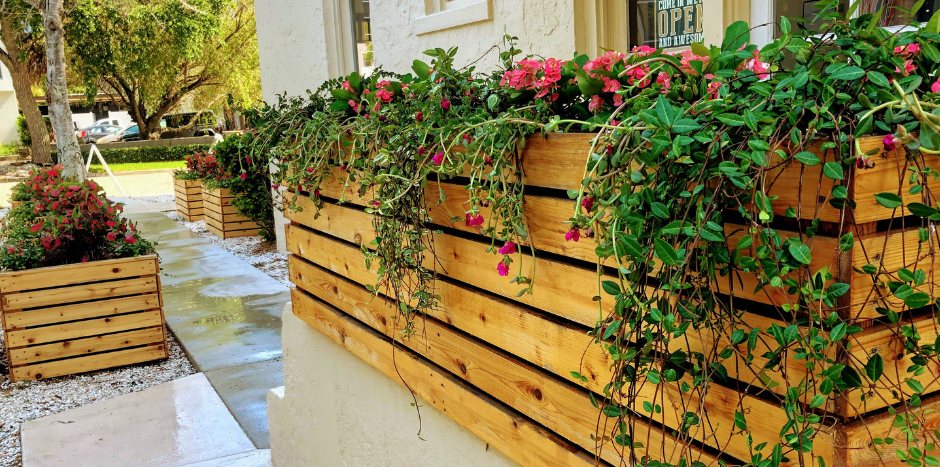 Beautiful flowers in wood planter