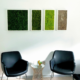Moss panel installation in office workspace