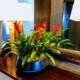 Bromeliad tropical centerpiece