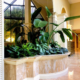 Live plant display in lobby fountain with large tropical plants