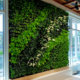 GSky Living Wall in country club