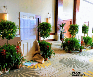 Plant rental event garden theme