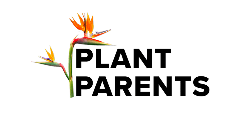 Plant Parents Sarasota, FL