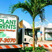 live plant delivery rental