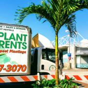 live plant delivery rental