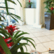 Resort Plantings Tropical Plants Indoors
