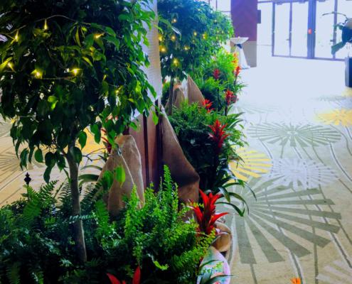 Plant rental garden