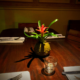 tropical plant for restaurant live centerpiece mini guzmania